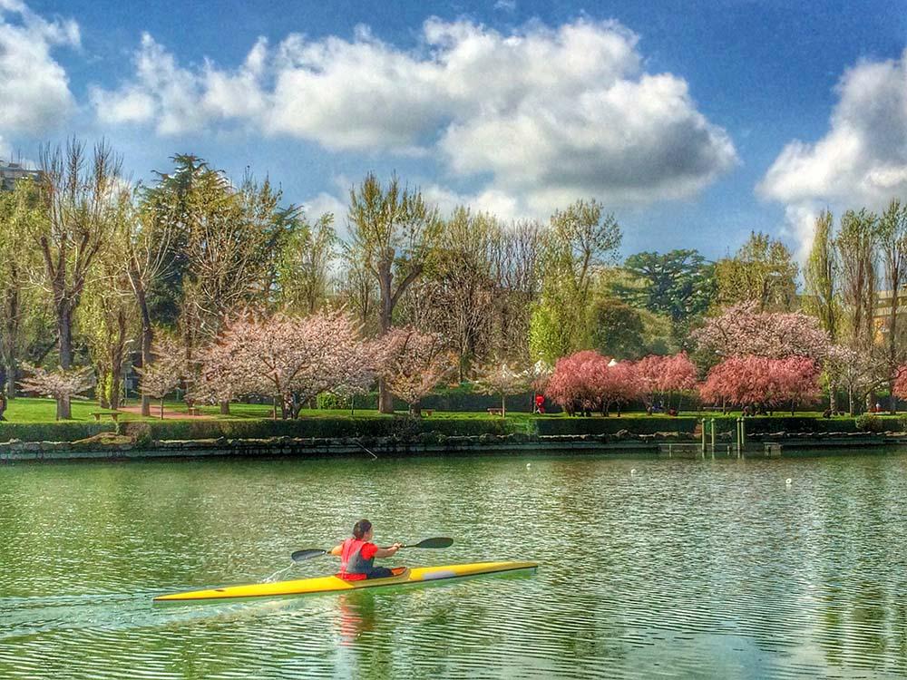 Sakura in Fiore EUR Roma