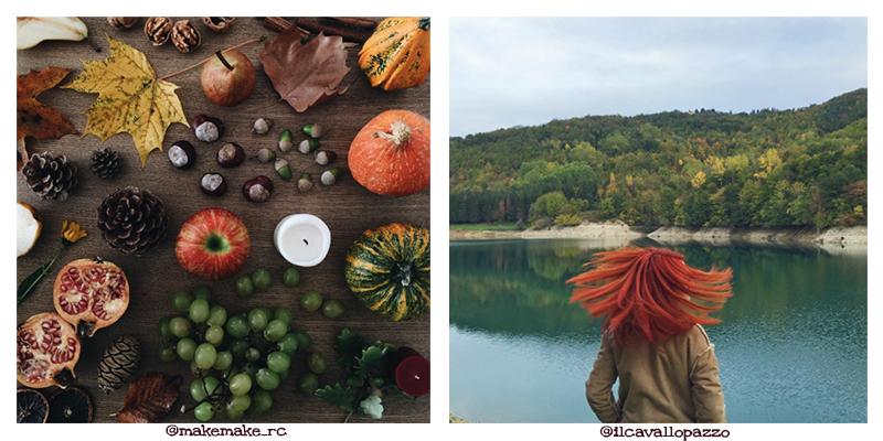 #autumn4igers