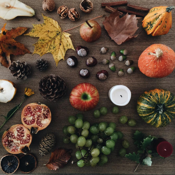 autumn4igers