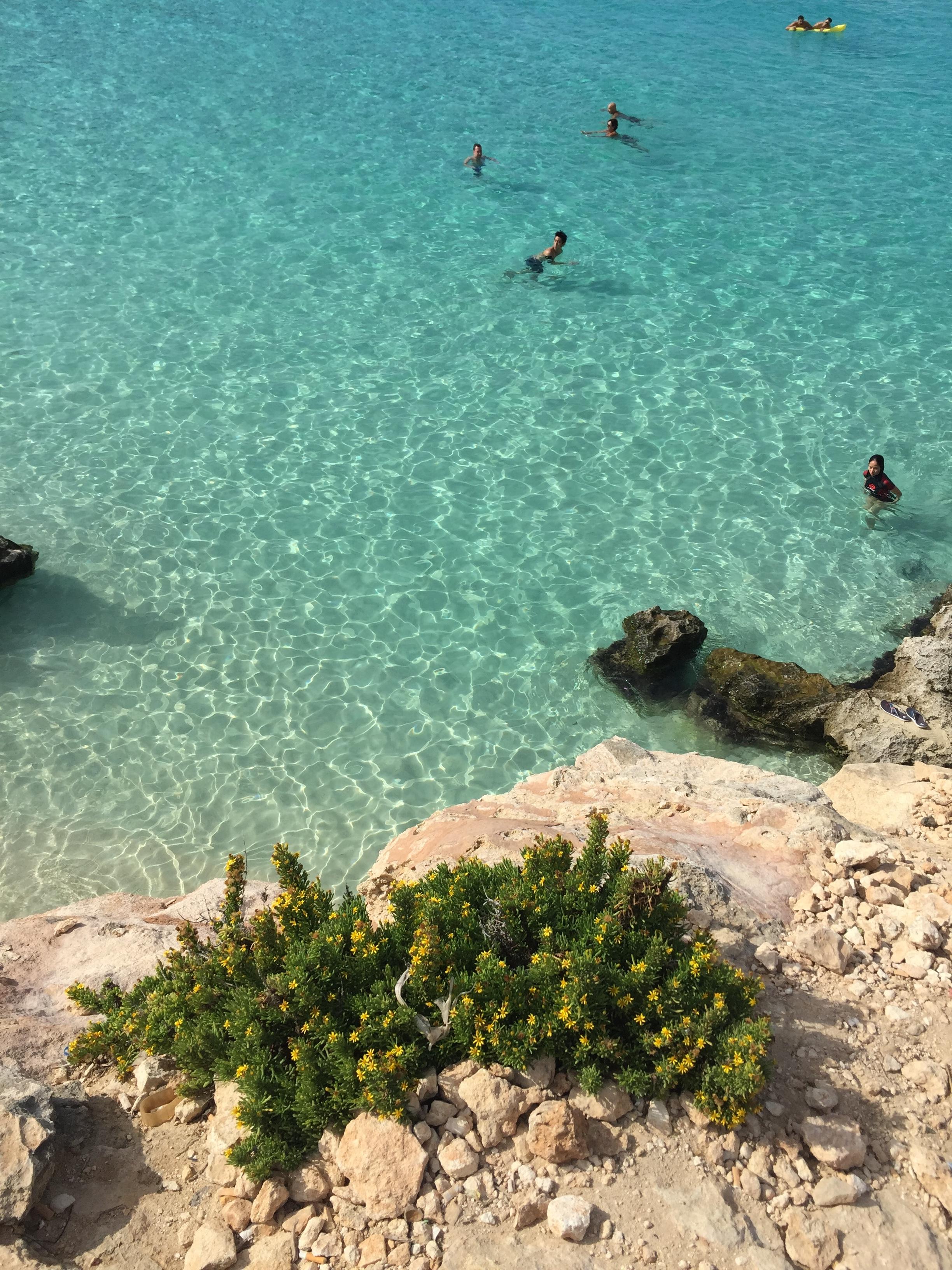Malta Ayurveda,vivere l\'isola tra serenità e meditazione - Ezio ...