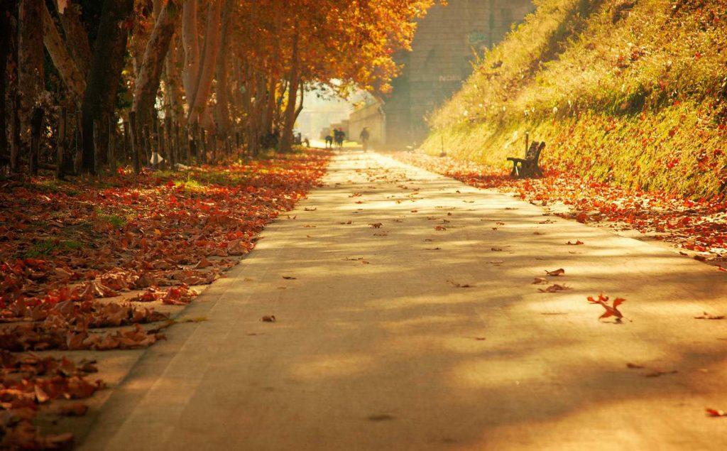 Il foliage in autunno